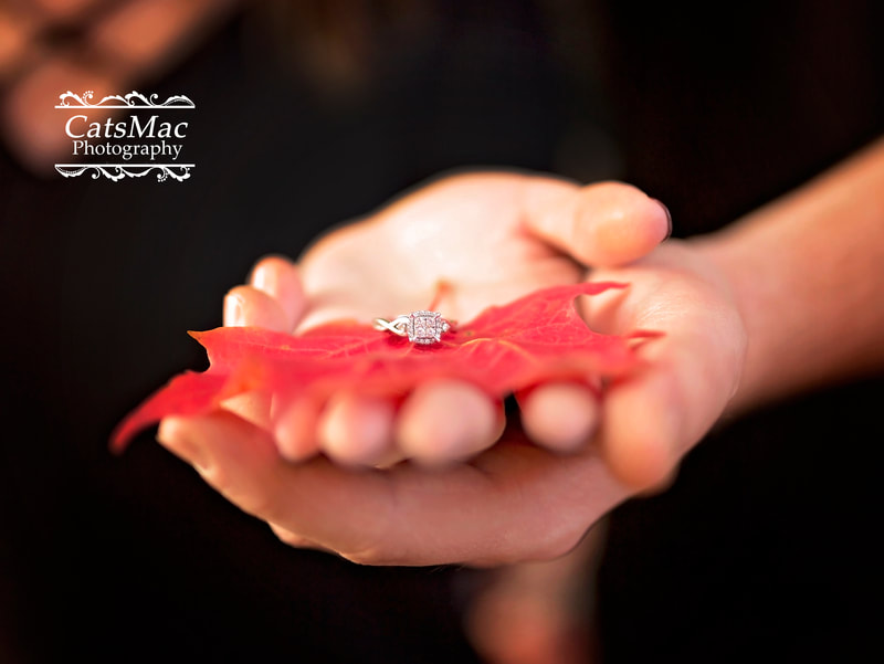 Engagement Ring Maple Leaf Photo session Peterborough CatsMac