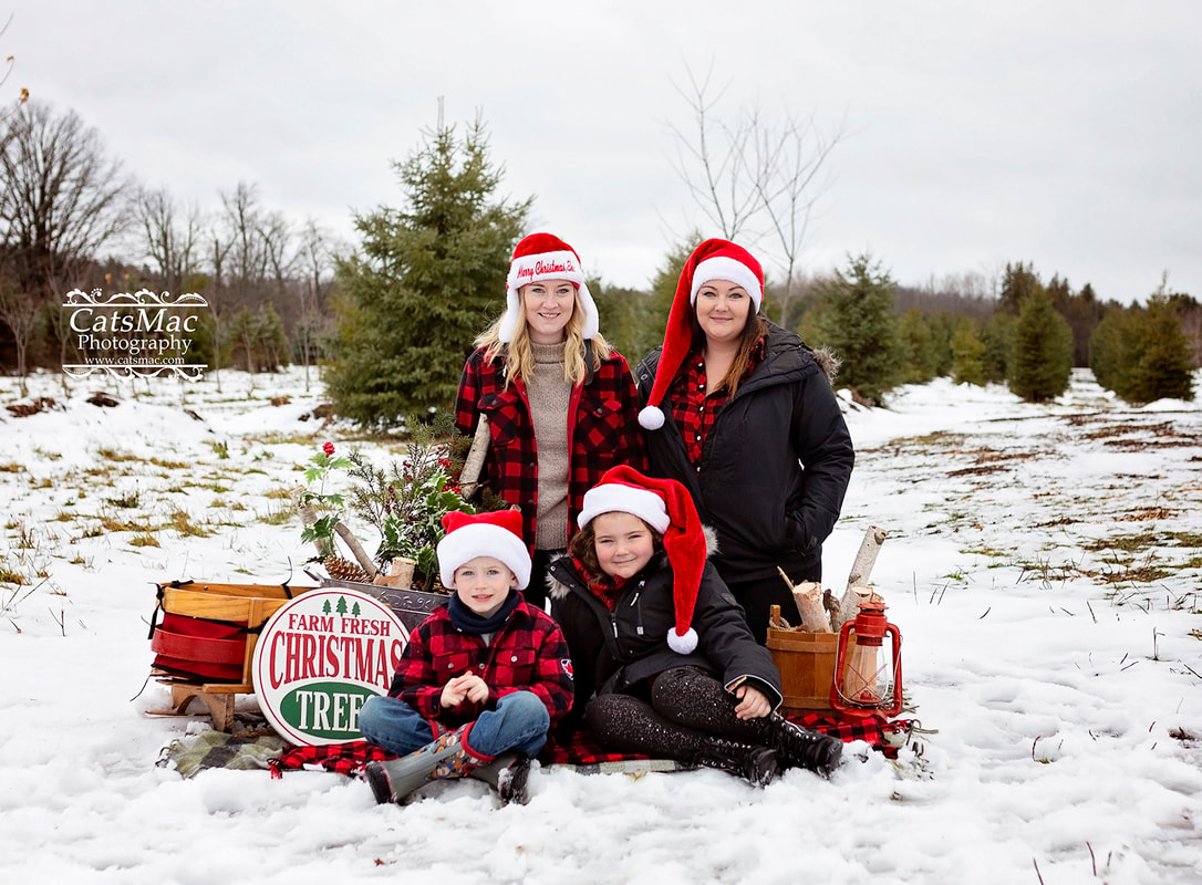 Christmas tree farm photo sessions
