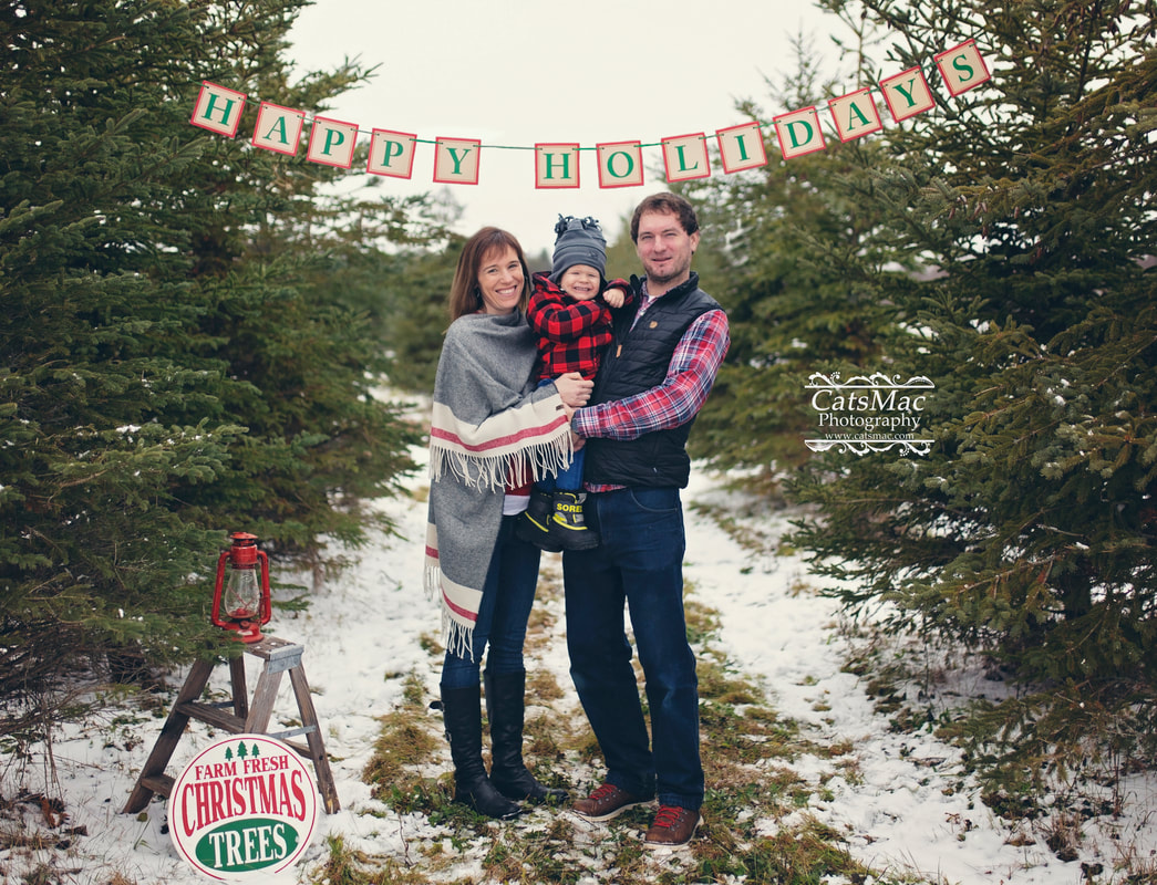 Tree Farm Minis Sessions