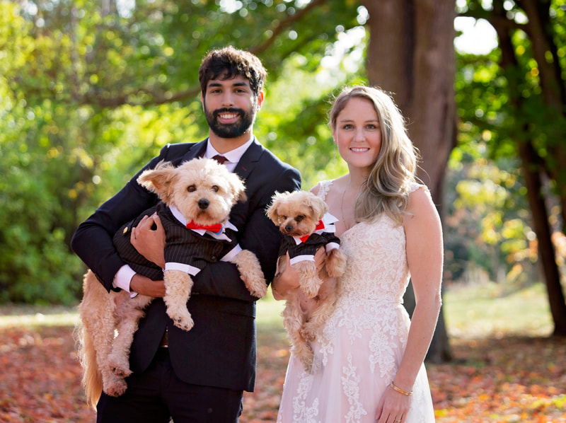 Bride Groom and dogs