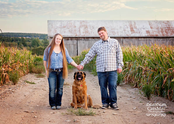 engagement session cornfield